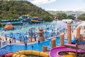 【モンキーパーク】水の楽園「モンプル」7/7(土) OPEN! @ 日本モンキーパーク | 犬山市 | 愛知県 | 日本